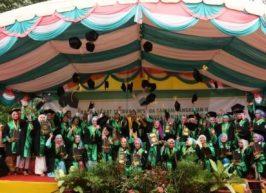 227 MAHASISWA STAIN DIWISUDA